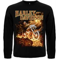 Футболка с длинными рукавами Harley Davidson